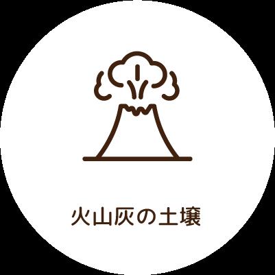 火山灰の土壌