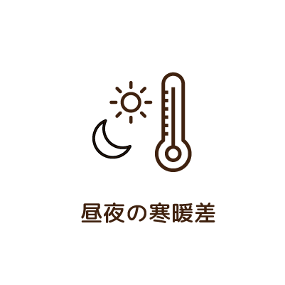 昼夜の寒暖差